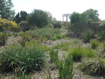 The Australian Garden at Nymans May 2017
