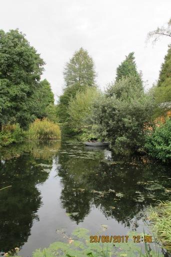 Pic of water garden (Beth Chatto's Garden)